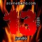 Imagen de junillo